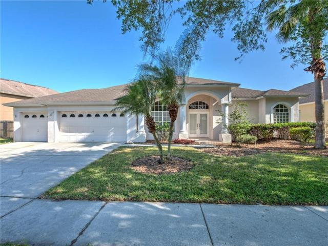 5207 Lady Rose Court, Lutz, FL 33558 (MLS #T3170265) :: Medway Realty