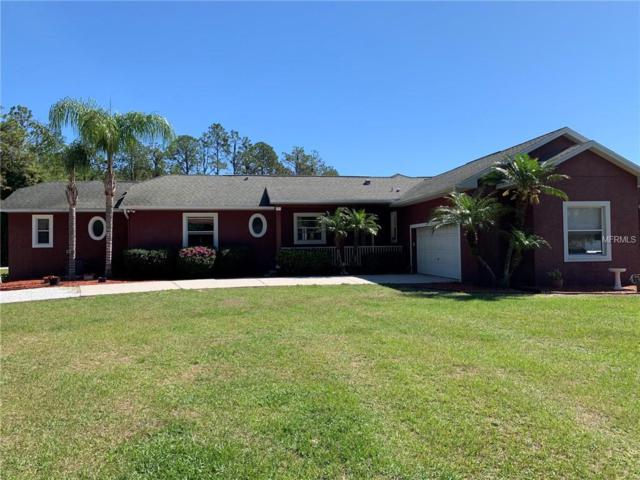 21824 Dupree Drive, Land O Lakes, FL 34639 (MLS #T3170387) :: Cartwright Realty