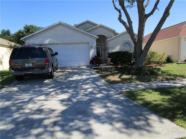 4408 Horseshoe Pick Lane, Valrico, FL 33594 (MLS #T3170388) :: Welcome Home Florida Team