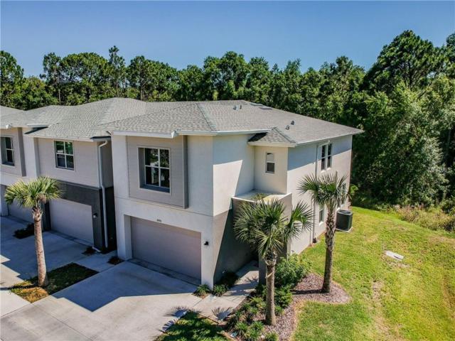 6420 Sanctuary Creek Lane, Tampa, FL 33625 (MLS #T3170473) :: Cartwright Realty