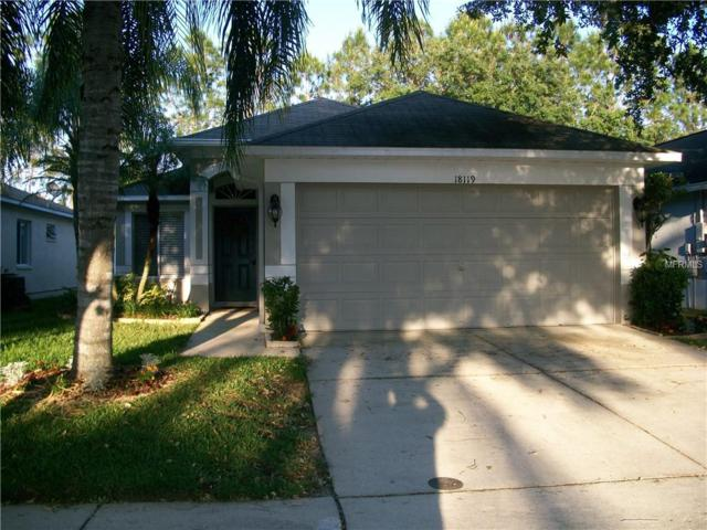 Address Not Published, Tampa, FL 33647 (MLS #T3170496) :: Cartwright Realty