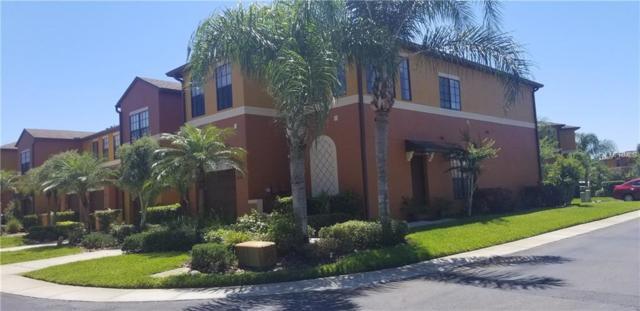 30146 Goodwick Way, Wesley Chapel, FL 33543 (MLS #T3170644) :: Cartwright Realty
