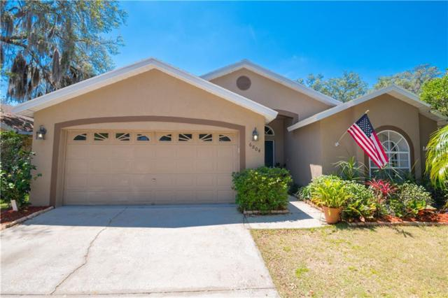 6804 Silver Branch Court, Tampa, FL 33625 (MLS #T3170697) :: The Duncan Duo Team