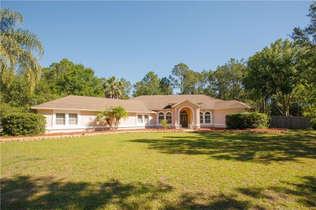 27843 Black Hawk Drive, Wesley Chapel, FL 33544 (MLS #T3170735) :: Cartwright Realty