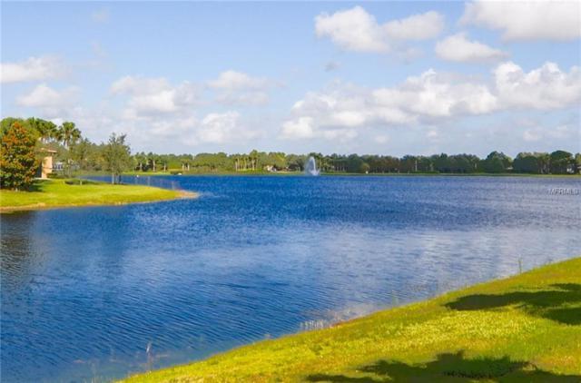 5018 Stone Harbor Circle, Wimauma, FL 33598 (MLS #T3170782) :: The Duncan Duo Team