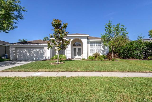 Address Not Published, Wesley Chapel, FL 33544 (MLS #T3170931) :: The Duncan Duo Team
