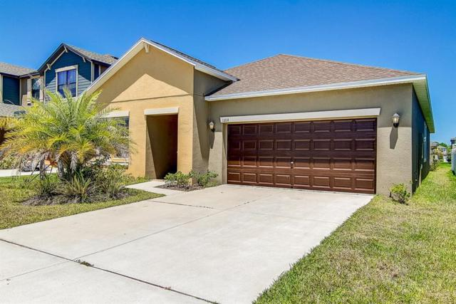 11814 Valhalla Woods Drive, Riverview, FL 33579 (MLS #T3170946) :: Medway Realty