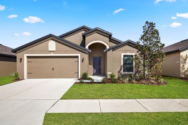 1010 Wynnmere Walk Avenue, Ruskin, FL 33570 (MLS #T3171039) :: Team Bohannon Keller Williams, Tampa Properties
