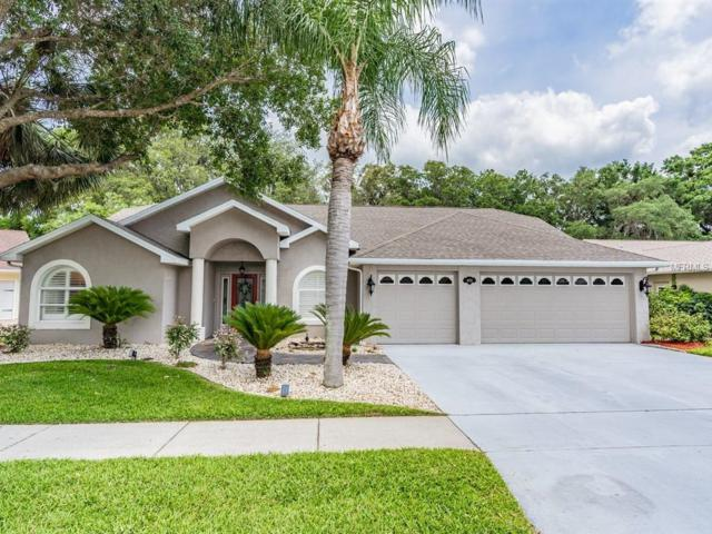 6722 Northlake Drive, Zephyrhills, FL 33542 (MLS #T3171109) :: Lovitch Realty Group, LLC