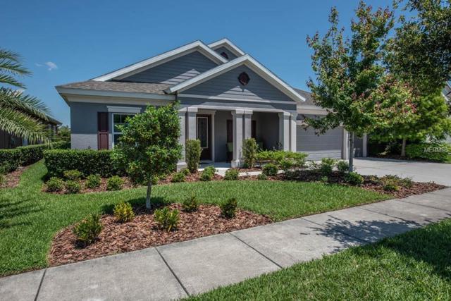 7223 Bowspirit Place, Apollo Beach, FL 33572 (MLS #T3171156) :: Premium Properties Real Estate Services