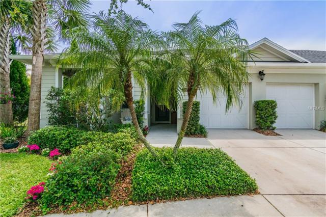 6802 Muncaster Court, Tampa, FL 33625 (MLS #T3171212) :: Lovitch Realty Group, LLC