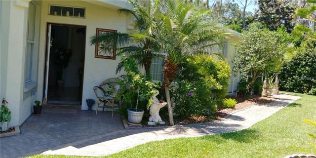 3302 Chapel Creek Circle, Wesley Chapel, FL 33544 (MLS #T3171292) :: Griffin Group