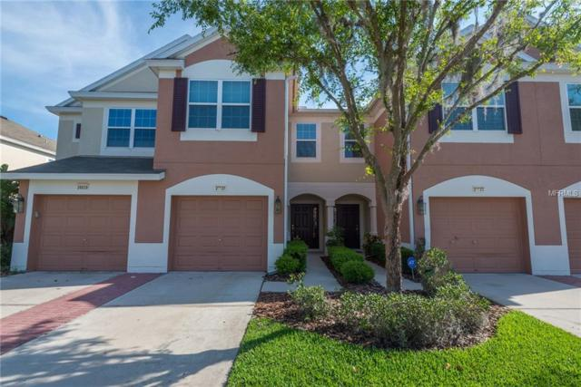 26631 Castleview Way, Wesley Chapel, FL 33544 (MLS #T3171506) :: The Duncan Duo Team