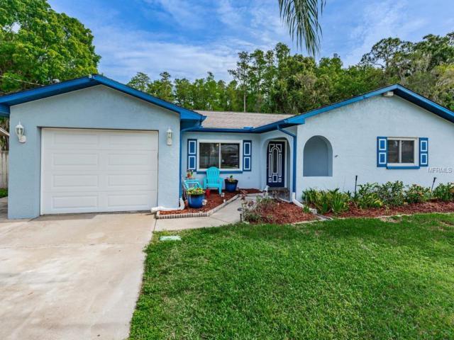 11 Cypress Drive, Palm Harbor, FL 34684 (MLS #T3171615) :: Delgado Home Team at Keller Williams