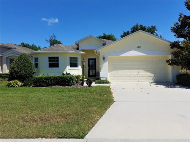 6250 Silver Leaf Lane, Lakeland, FL 33813 (MLS #T3171660) :: The Duncan Duo Team
