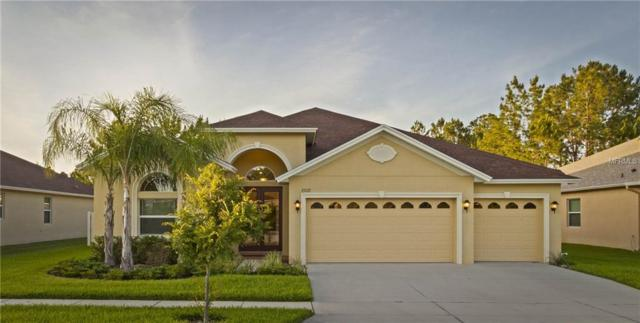27137 Sora Boulevard, Wesley Chapel, FL 33544 (MLS #T3171665) :: Griffin Group