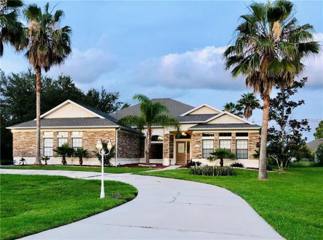 2231 Steffanie Court, Kissimmee, FL 34746 (MLS #T3171725) :: Premium Properties Real Estate Services