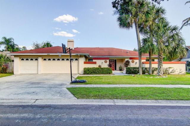 14005 Wolcott Drive, Tampa, FL 33624 (MLS #T3171741) :: The Duncan Duo Team