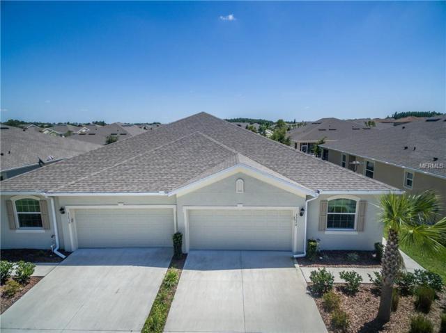 33024 Windelstraw Drive, Wesley Chapel, FL 33545 (MLS #T3171788) :: Team Bohannon Keller Williams, Tampa Properties