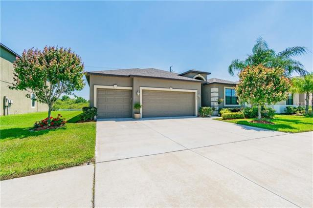 11613 Brighton Knoll Loop, Riverview, FL 33579 (MLS #T3171819) :: Medway Realty