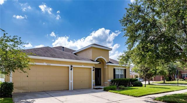 20030 Tamiami Avenue, Tampa, FL 33647 (MLS #T3171973) :: Cartwright Realty