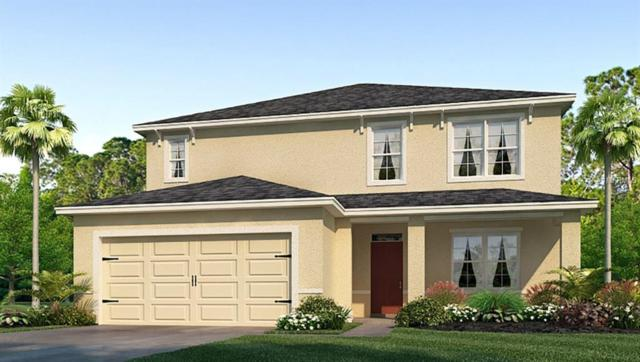 30793 Summer Sun Loop, Wesley Chapel, FL 33545 (MLS #T3171975) :: The Duncan Duo Team