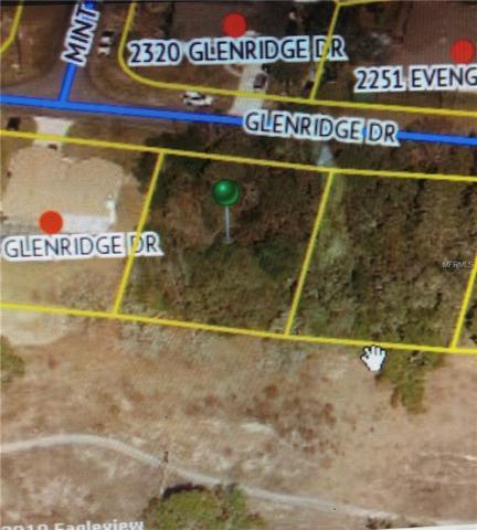 2319 Glenridge Drive #10, Spring Hill, FL 34608 (MLS #T3172003) :: The Duncan Duo Team