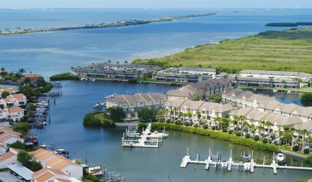 4325 Spinnaker Cove Lane, Tampa, FL 33615 (MLS #T3172087) :: The Duncan Duo Team