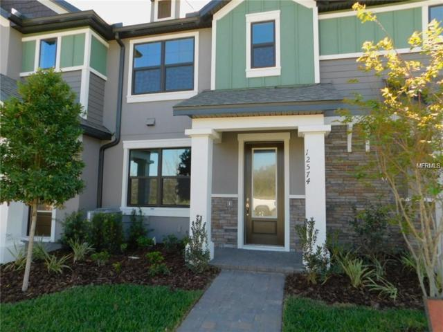 12664 Rangeland Boulevard, Odessa, FL 33556 (MLS #T3172120) :: Team Bohannon Keller Williams, Tampa Properties