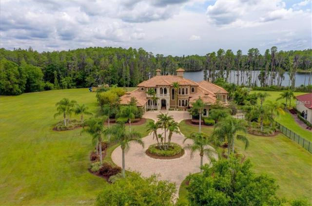 17221 Breeders Cup Drive, Odessa, FL 33556 (MLS #T3172175) :: The Duncan Duo Team