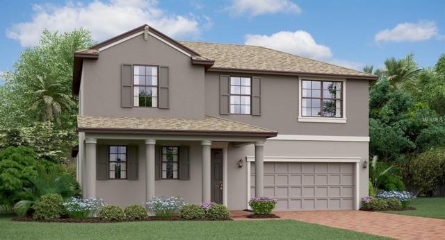 13417 Orca Sound Drive, Riverview, FL 33579 (MLS #T3172207) :: Team Bohannon Keller Williams, Tampa Properties