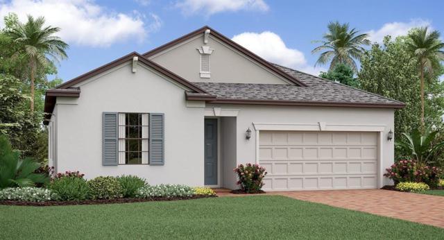 13222 Orca Sound Drive, Riverview, FL 33579 (MLS #T3172209) :: Team Bohannon Keller Williams, Tampa Properties