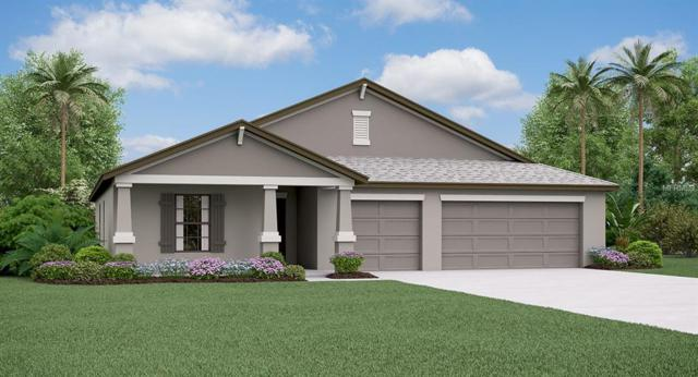 9645 Sage Creek Drive, Ruskin, FL 33573 (MLS #T3172238) :: Griffin Group
