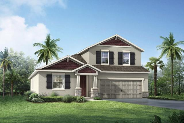 13513 Texas Sage Place, Riverview, FL 33579 (MLS #T3172247) :: The Duncan Duo Team