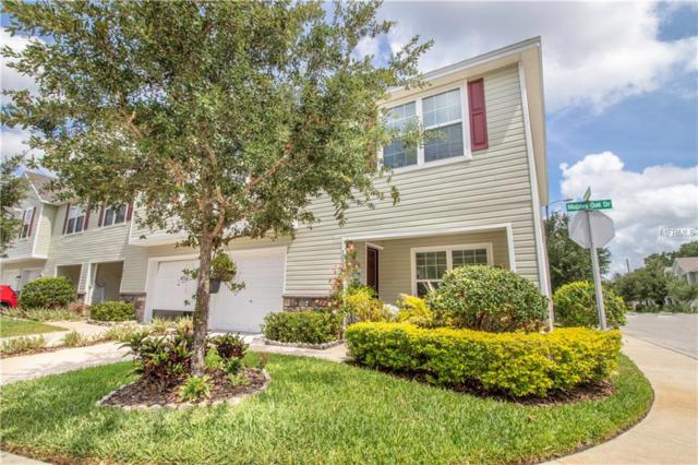 3022 Mojave Oak Drive, Valrico, FL 33594 (MLS #T3172308) :: Griffin Group