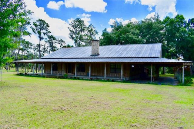 4618 Medulla Road, Lakeland, FL 33811 (MLS #T3172317) :: Florida Real Estate Sellers at Keller Williams Realty