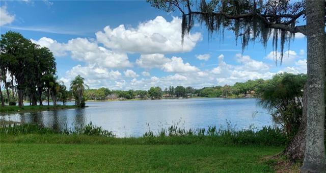 16113 Winding Water Drive, Odessa, FL 33556 (MLS #T3172353) :: The Duncan Duo Team