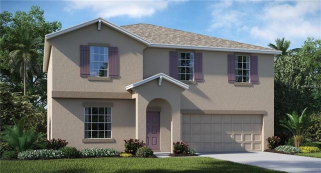 7013 Trent Creek Drive, Ruskin, FL 33573 (MLS #T3172370) :: Medway Realty