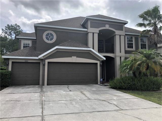 18913 Chaville Road, Lutz, FL 33558 (MLS #T3172406) :: Andrew Cherry & Company