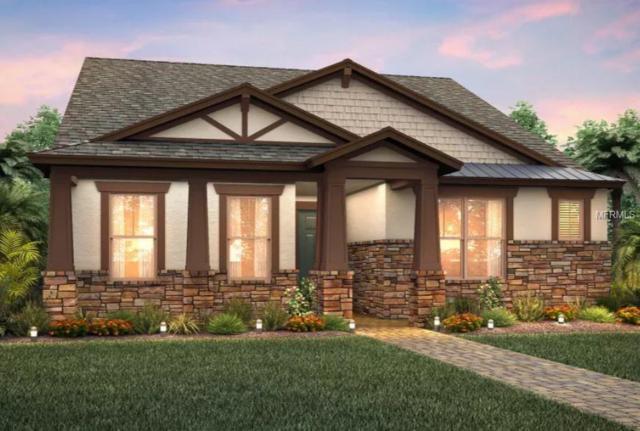 2821 Murray Pass, Odessa, FL 33556 (MLS #T3172527) :: Team Bohannon Keller Williams, Tampa Properties