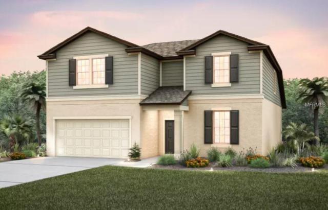 6431 Kenava Loop, Palmetto, FL 34221 (MLS #T3172533) :: Burwell Real Estate