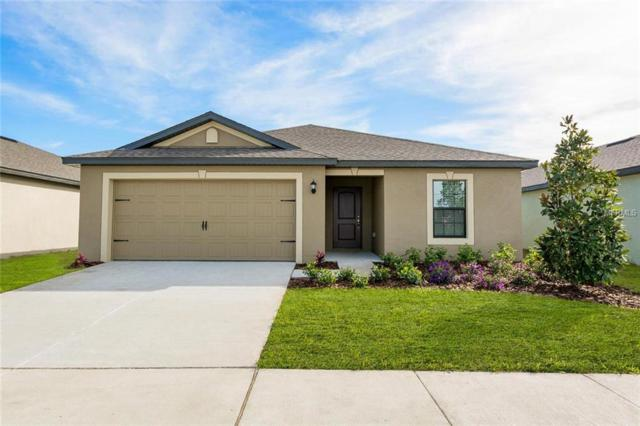 1012 Wynnmere Walk Avenue, Ruskin, FL 33570 (MLS #T3172567) :: Team Bohannon Keller Williams, Tampa Properties