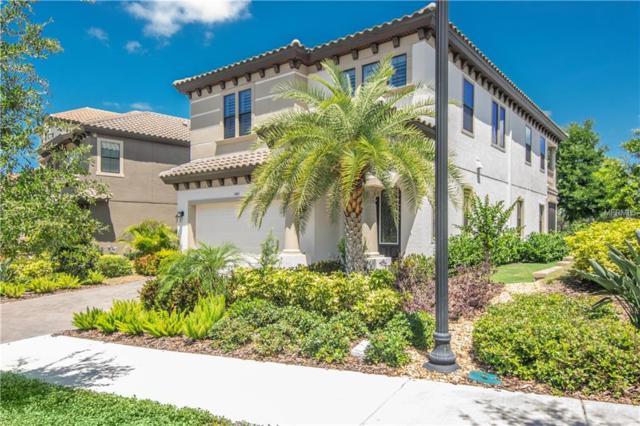 1461 Marinella Drive, Palm Harbor, FL 34683 (MLS #T3172590) :: Delgado Home Team at Keller Williams