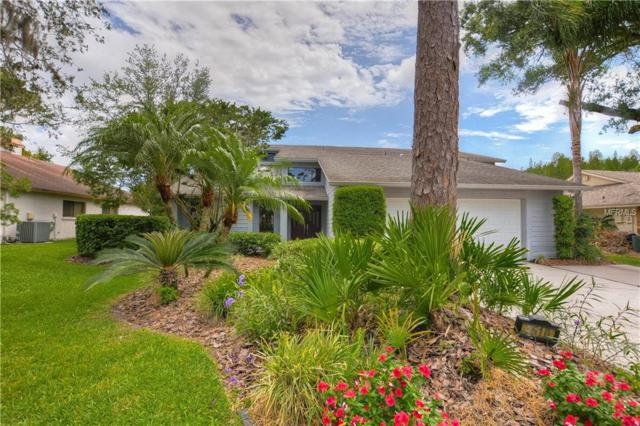 4510 Pine Hollow Drive, Tampa, FL 33624 (MLS #T3172595) :: Medway Realty