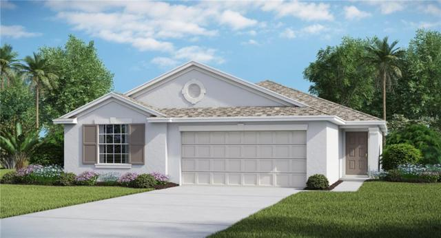 7309 Tiger Trail Court, Ruskin, FL 33573 (MLS #T3172614) :: Medway Realty