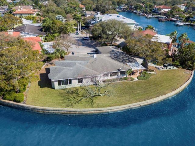 2401 S Dundee Street, Tampa, FL 33629 (MLS #T3172682) :: Cartwright Realty
