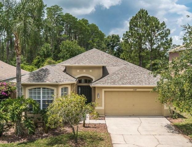 7549 Citrus Blossom Drive, Land O Lakes, FL 34637 (MLS #T3172698) :: Team TLC | Mihara & Associates