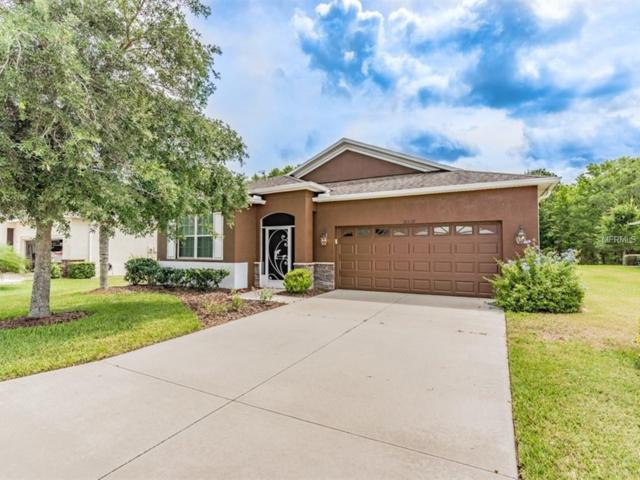 10539 Machrihanish Circle, San Antonio, FL 33576 (MLS #T3172745) :: Delgado Home Team at Keller Williams