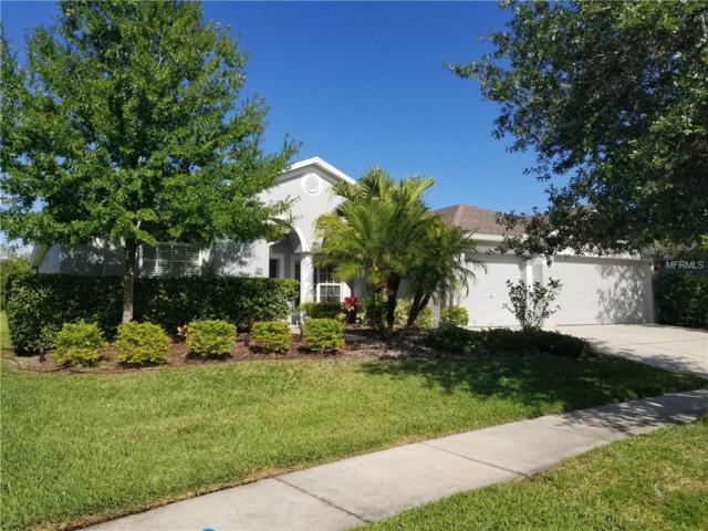 6218 Bridgevista Drive, Lithia, FL 33547 (MLS #T3172786) :: Dalton Wade Real Estate Group