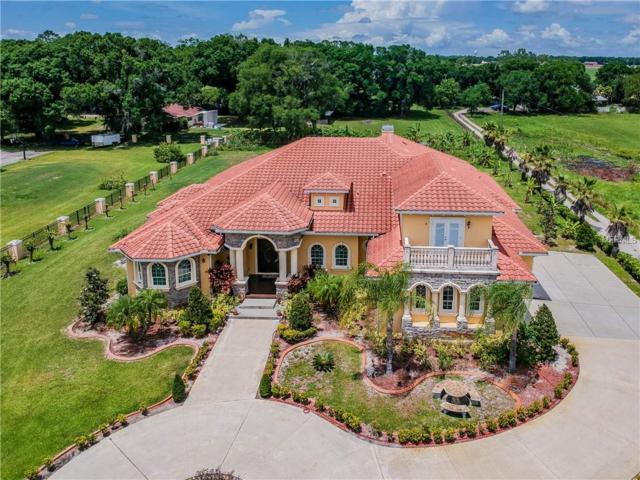 1516 W Trapnell Road, Plant City, FL 33566 (MLS #T3172822) :: The Duncan Duo Team